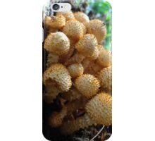 mystery mushrooms iPhone Case/Skin