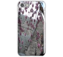 Spring Comes to Dublin iPhone Case/Skin
