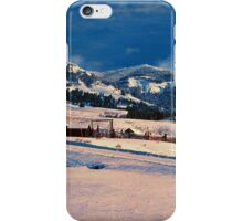 BARN,WINTER iPhone Case/Skin