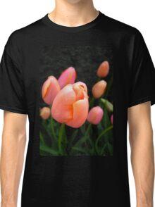 Tulip Dewdrop Classic T-Shirt