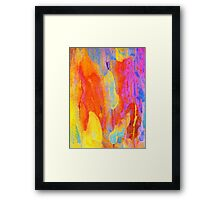 Summer Eucalypt Abstract 19 Framed Print