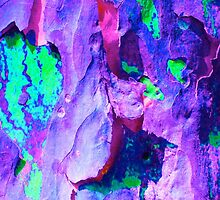 Spring Eucalypt Abstract 17 by Margaret Saheed