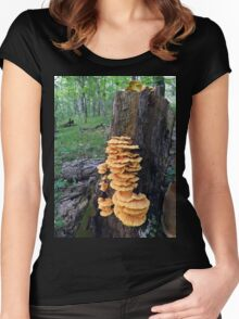 Yellow Shelf Mushrooms Women's Fitted Scoop T-Shirt