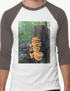 Yellow Shelf Mushrooms Men's Baseball ¾ T-Shirt