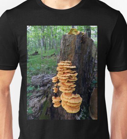 Yellow Shelf Mushrooms Unisex T-Shirt