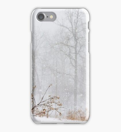 Winter storm on the mountain iPhone Case/Skin