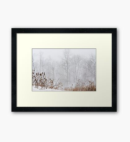 Winter storm on the mountain Framed Print