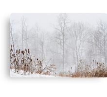 Winter storm on the mountain Canvas Print