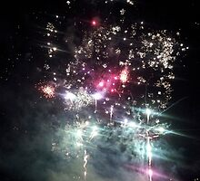 Fireworks: Session 2 by CarynAnneDesign