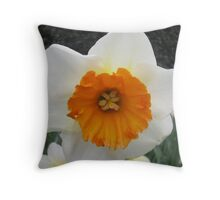 THE FACE OF A DAFFODIL Throw Pillow