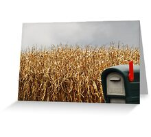 You've Got Mail... Greeting Card