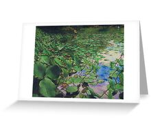 In The Lilly Pads Greeting Card