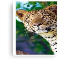 T Shirt Leopard Mountain Cheetah Safari Jungle Zoo Animal Canvas Print