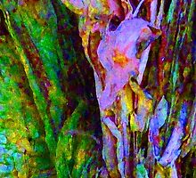 Spring Paperbark Tree Abstract by Margaret Saheed