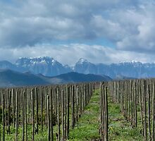 Drakenstein Mountains by Blagnys