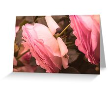 rose in the garden Greeting Card