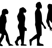 Soccer Evolution by kwg2200