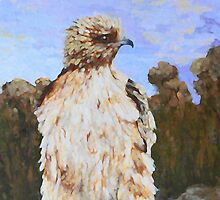 Little Eagle by Margaret Saheed