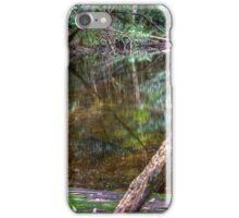 Downstream - Rainforest - NSW - Australia iPhone Case/Skin