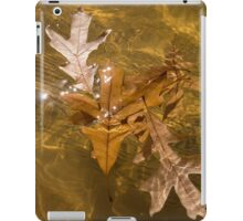 Honey Colored Sun Flares - Oak Leaves Floating in a Fountain iPad Case/Skin