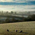 Winter Mists by BlueShift