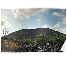 Black Mountain near Cooktown ,Far North Queensland. Poster