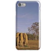 Mareeba,termite mounds iPhone Case/Skin