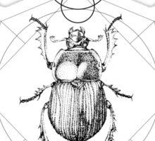 Dots, Lines & Beetle Sticker