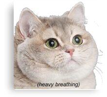 Heavy Breathing Cat- Improved Metal Print