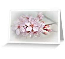 Blossom part 1 Greeting Card