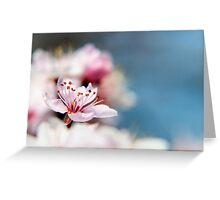 Blossom part 2 Greeting Card