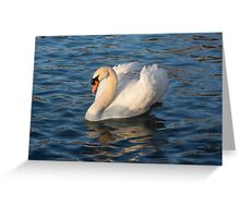 Pride and Grace - Swan Gliding on Satiny Ripples Greeting Card
