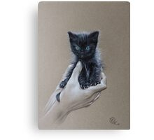 The safest place to be Canvas Print
