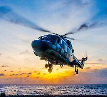 Landing Lynx by AlexFHiemstra