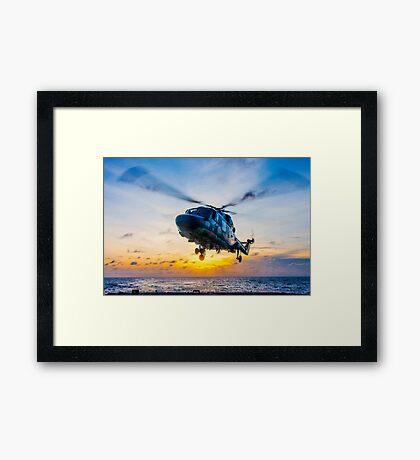 Landing Lynx Framed Print