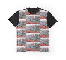 Dom Luis I Bridge  Graphic T-Shirt