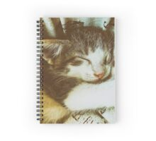 Baby Tabby Cat Sleeping In Kitty Basket Spiral Notebook