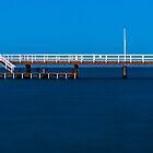 Fishing Platform by metriognome