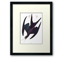 Frigate Bird - John James Audubon Framed Print