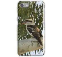 Kookaburras In a Tall Gum Tree iPhone Case/Skin