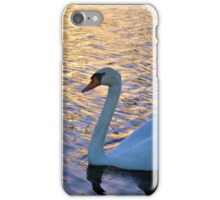 Sunset Swim iPhone Case/Skin