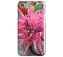 Pineapple Star Plant iPhone Case/Skin