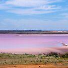 Lake Bangorema, Locheil, South Australia by Jan Stead JEMproductions