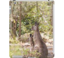 roos iPad Case/Skin