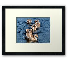 Almost Adults............. Framed Print