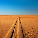 Road to endless possibilities by Owed to Nature