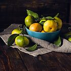 Still Life with Yellow-green Tangerines by Sevablsv