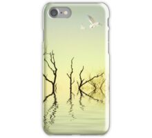 Calm iPhone Case/Skin