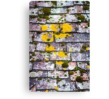 Background of old roof covered with tiles Canvas Print