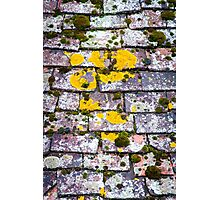 Background of old roof covered with tiles Photographic Print